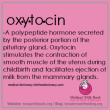 Graphic with definition of the term oxytocin