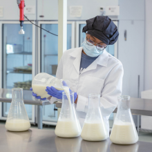 Lab technician pouring breastmilk into a flask