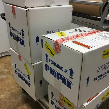 Overnight shipping boxes filled with frozen donor milk