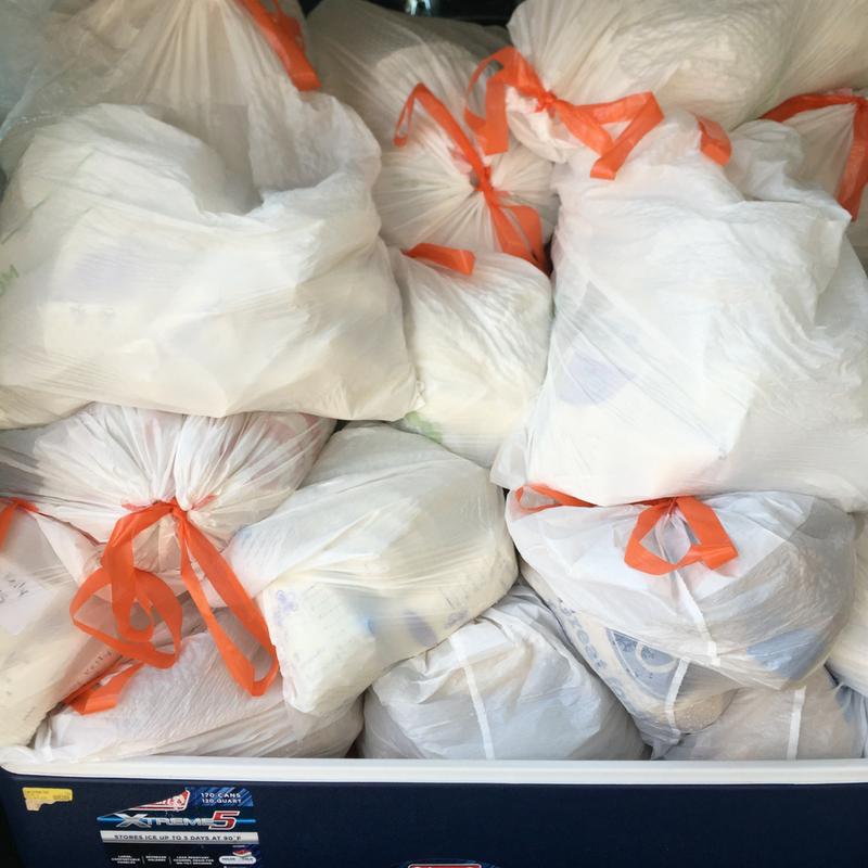 Trash bags full of donated breastmilk