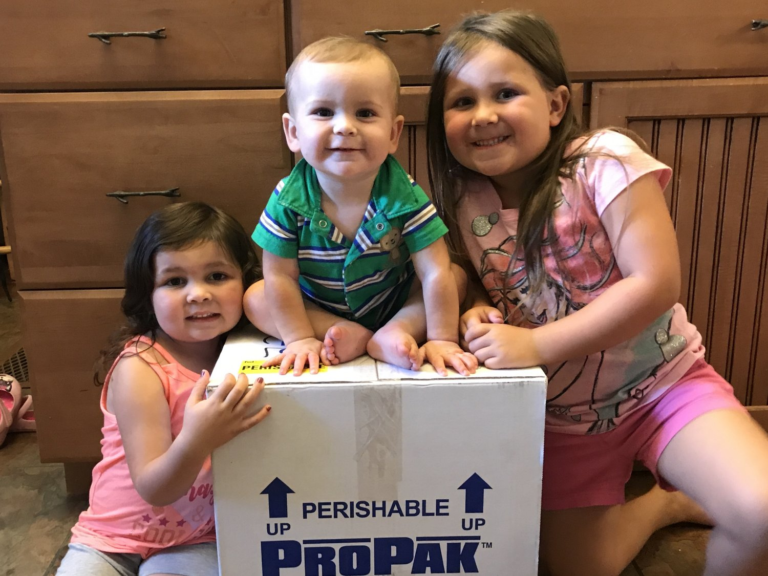 Young girl, toddler girl, and baby boy sit around a box